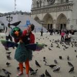 Birdo at Notre Dame